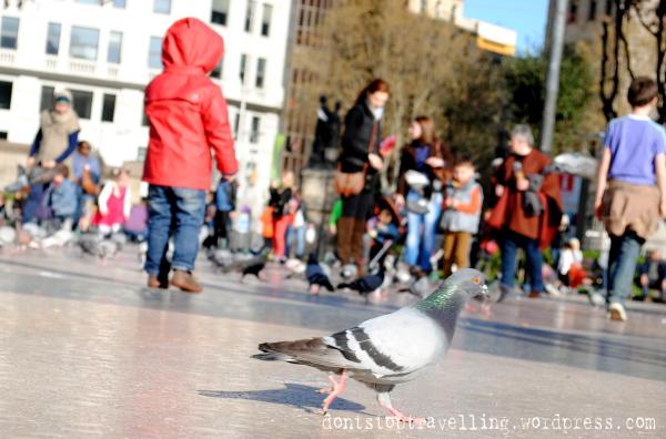Plaza Cataluña / Fotografía de Beatriz Lizana